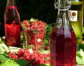 Ароматный самогон из ягод смородины фото
