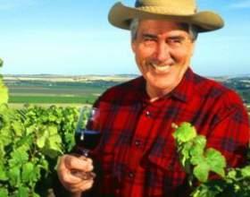 Австралийские вина – рожденные между пустыней и океаном фото