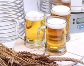 Bavaria – простота и комфорт домашнего пивоварения фото