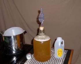 Брага для питья из варенья и сока фото
