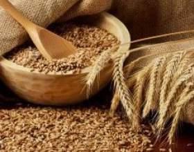 Брага для самогона из пшеницы фото