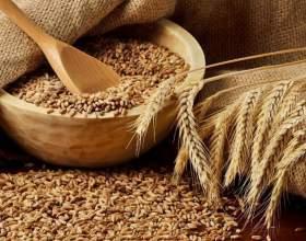 Брага из пшеницы для самогона фото