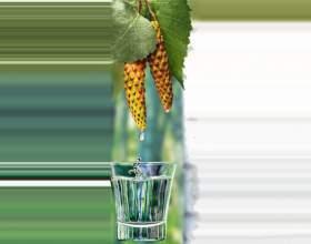 Целебная березовая настойка на водке фото