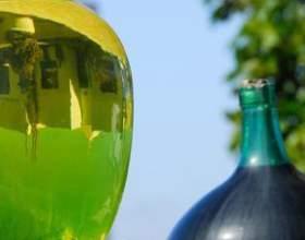 Чача – темпераментная кавказская водка из винограда фото