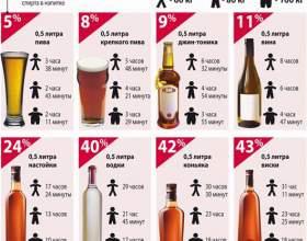 Через сколько выветривается алкоголь из организма человека фото