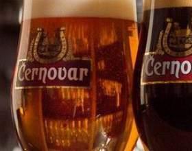 Черновар: популярное пиво из чехии фото