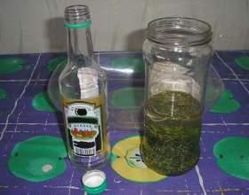 Чистотел на водке: рецепт настойки и ее применение фото