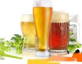 Что будет если пить пиво каждый день? фото