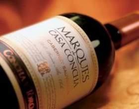 Что из себя представляет чилийское вино фото