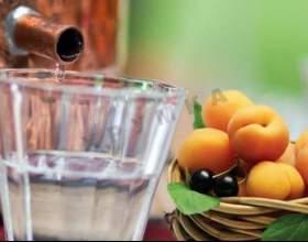 Делаем самогон из абрикосов по балканским рецептам фото