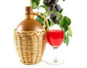 Домашнее сливовое вино по несложному рецепту фото