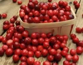 Домашнее вино из ягод клюквы фото