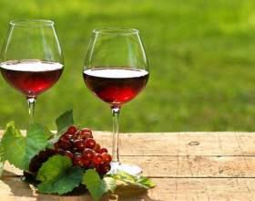 Домашнее вино из калины фото