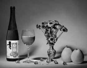 Домашнее вино из слив синих и желтых фото