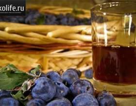 Домашнее вино из терна фото