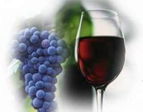 Домашнее вино из винограда изабелла простые рецепты фото