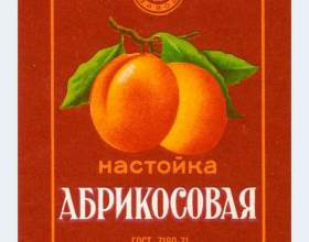 Домашние абрикосовые наливки и настойки. Рецепты простые и не очень фото