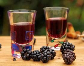 Домашние рецепты вин из ежевики фото