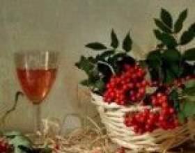 Два лучших рецепта вина из красной рябины фото