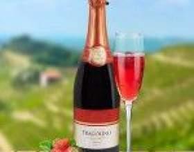Фраголино (fragolino) – итальянское виноградное вино и шампанское с клубничным вкусом фото