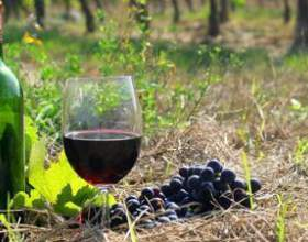 Греческое вино – опыт четырех тысячелетий фото