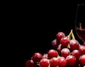Характеристика винограда каберне совиньон и вина из него фото