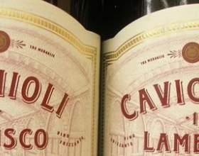 Игристое вино ламбруско – легендарный напиток из италии фото