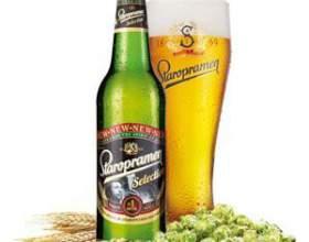 История чешского пива старопрамен фото