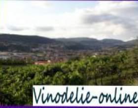 Итальянские вина из провинции венето фото