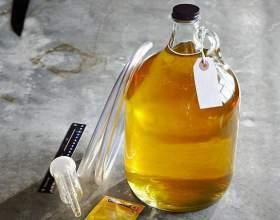 Это правильные пчелы – они варят правильный мёд! Рецепт медовухи фото