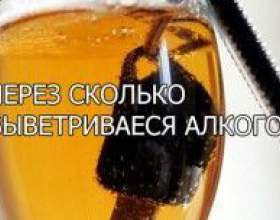 Как долго выветривается пиво? фото