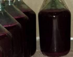 Как готовится домашнее вино из винограда «изабелла»? фото
