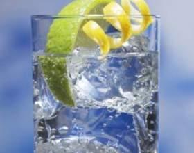 Как и с чем пить джин фото