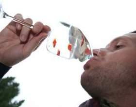 Как можно пить и не пьянеть? фото