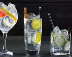 Как правильно пить джин? Секреты настоящих знатоков крепких напитков фото