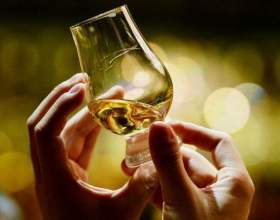 Как правильно пить виски — когда нужно не ртом, а с умом фото