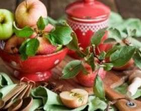 Как приготовить наливку из яблок фото