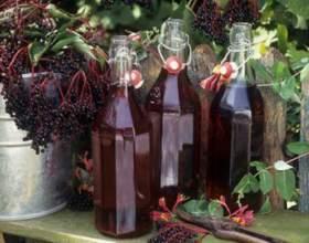 Как приготовить вино из черемухи. Домашний рецепт фото