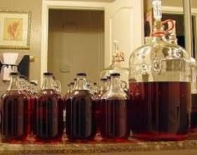 Как сделать дома вино из слив фото