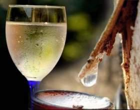 Как сделать домашнее вино из березового сока? фото