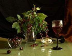 Как сделать домашнее вино из черемухи? фото