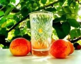 Как сделать домашний абрикосовый самогон? фото