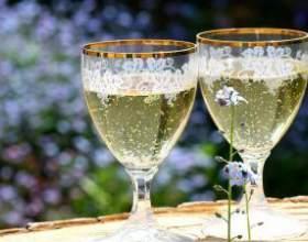 Как сделать шампанское из бузины в домашних условиях фото