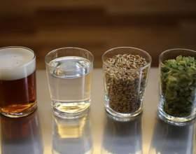 Как сварить пиво в домашних условиях? фото