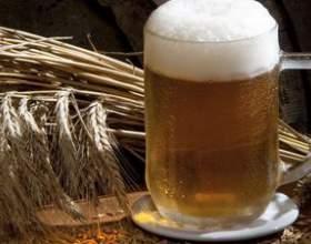 Какое оборудование для производства пива необходимо пивовару фото