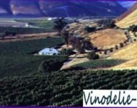 Калифорния фото