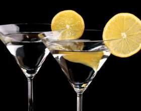 Коктейли с мартини, или с какими соками сочетается знаменитый напиток? фото