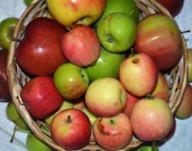 Компот яблочный из долек на зиму фото