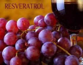 Красное вино и иммунитет фото