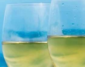 Ламбруско: легкое белое игристое вино для ценителей и не только фото